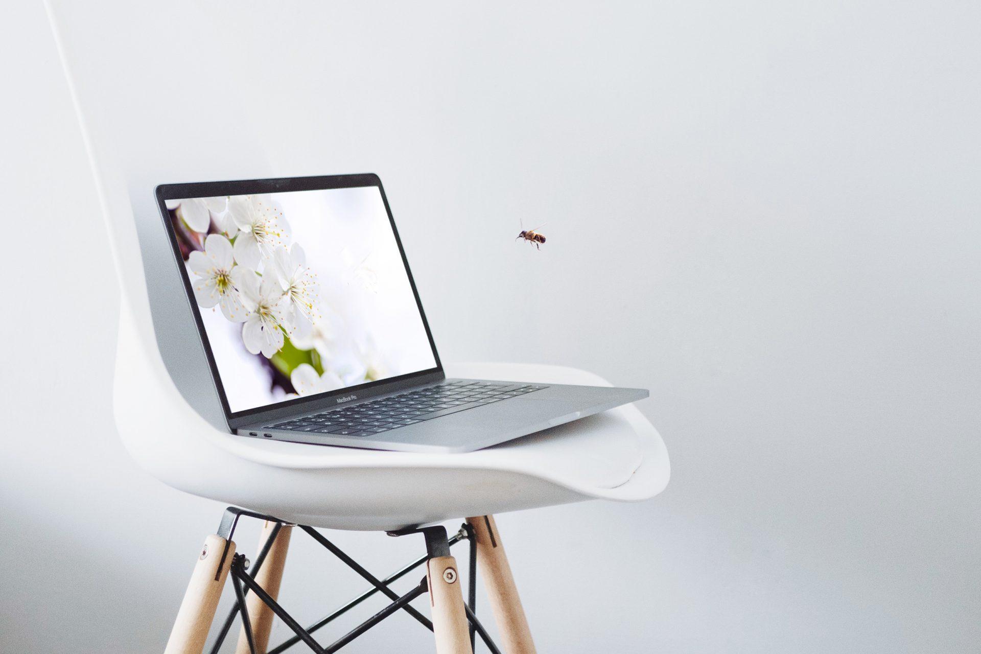Webdesign für Soloselbstständige